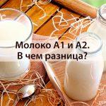 Разница молока а1 и а2