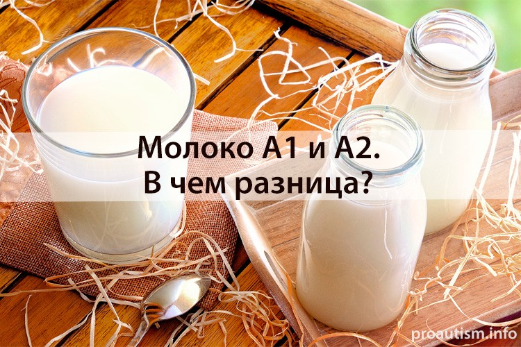 Молоко А1 и А2. В чем разница?