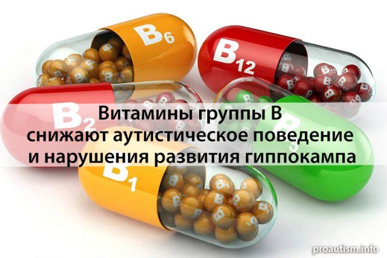 Витамины группы B снижают аутистическое поведение и нарушения развития гиппокампа, вызванное влиянием PM 2,5.
