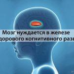 Мозг нуждается в железе для здорового когнитивного развития