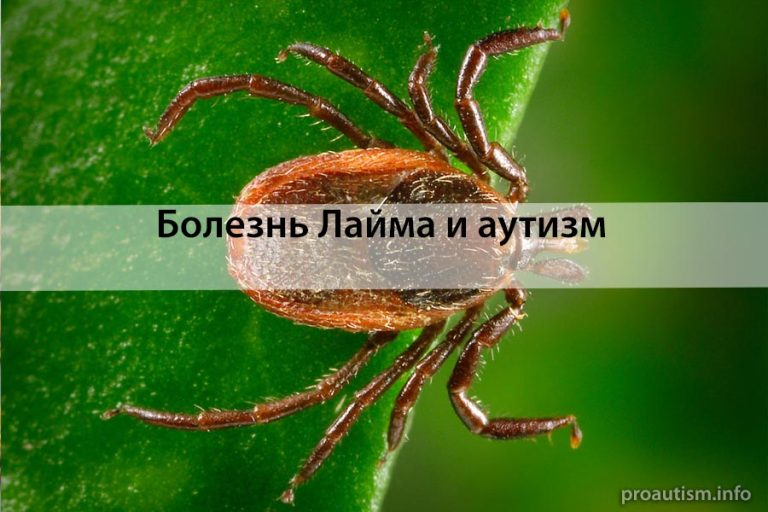 Аутизм и болезнь Лайма