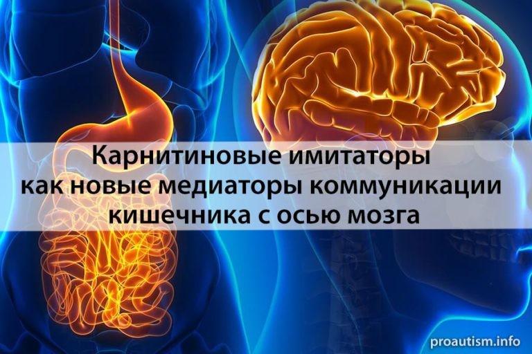 Полученные из микробиома карнитиновые имитаторы как новые медиаторы коммуникации кишечника с осью мозга