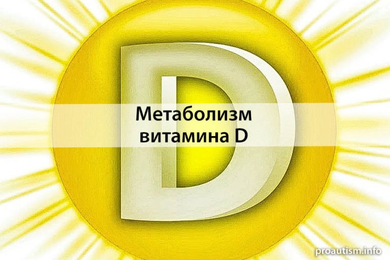 Метаболизм и биологические функции витамина Д