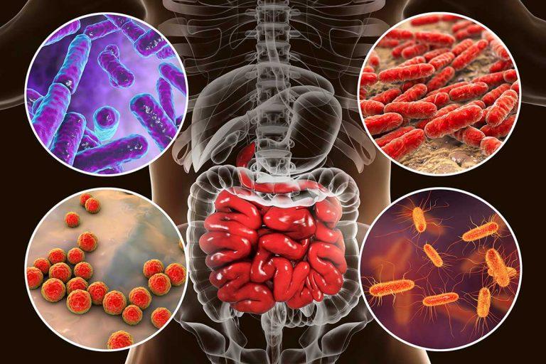 Особый микробиом кишечника, не связанный с питанием, который характеризует детей с аутизмом