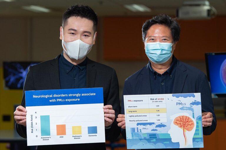 Метаанализ подтверждает тесную связь между PM2,5 и аутизмом